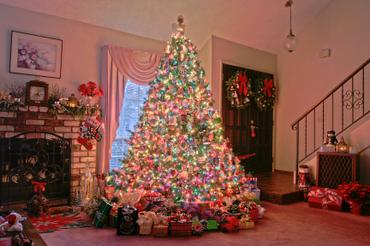 Christmas_tree_hdr_2